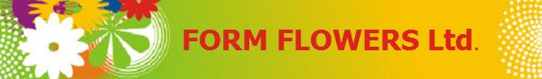 Logo http